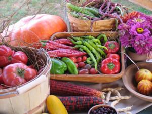Garden-Bounty